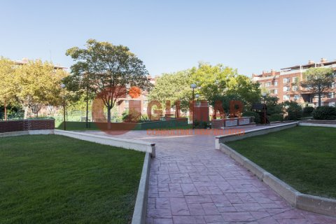Apartment for rent in Madrid, Spain, 3 bedrooms, 127.00m2, No. 1688 – photo 27