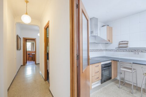 Apartment for sale in Sevilla, Seville, Spain, 5 bedrooms, 123.00m2, No. 2358 – photo 12
