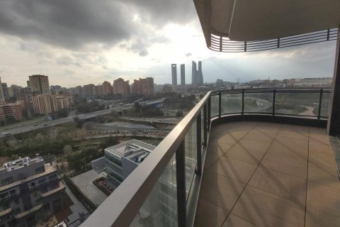 Apartment for rent in Madrid, Spain, 3 bedrooms, 155.00m2, No. 2601 – photo 9