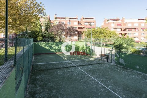 Apartment for rent in Madrid, Spain, 3 bedrooms, 127.00m2, No. 1688 – photo 11