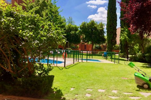 Apartment for rent in Madrid, Spain, 4 bedrooms, 150.00m2, No. 1937 – photo 13