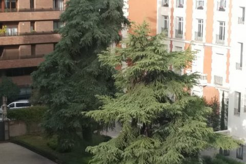 Apartment for sale in Madrid, Spain, 2 bedrooms, 110.00m2, No. 2542 – photo 20