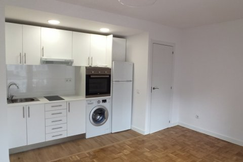 Apartment for rent in Madrid, Spain, 1 bedroom, 55.00m2, No. 2610 – photo 17