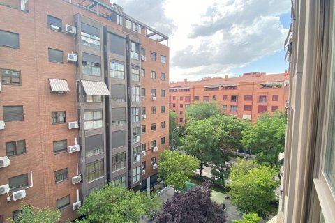 Apartment for rent in Madrid, Spain, 2 bedrooms, 72.00m2, No. 1685 – photo 21