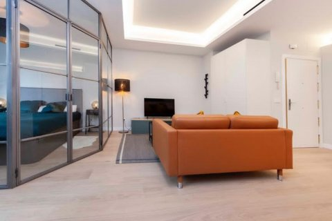 Apartment for rent in Madrid, Spain, 1 bedroom, 55.00m2, No. 2519 – photo 17