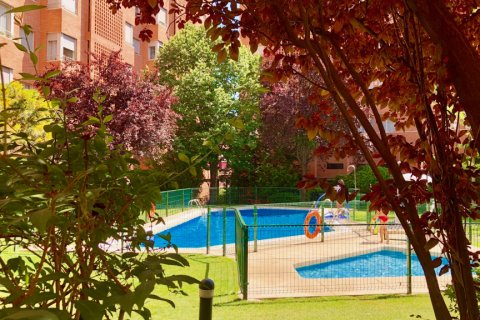 Apartment for rent in Madrid, Spain, 4 bedrooms, 150.00m2, No. 1937 – photo 22