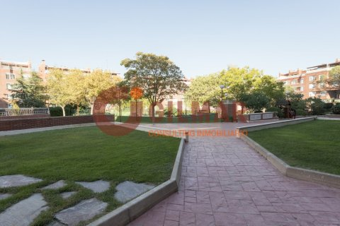 Apartment for rent in Madrid, Spain, 3 bedrooms, 127.00m2, No. 1688 – photo 22
