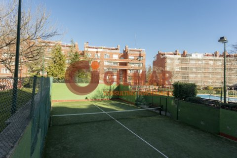 Apartment for rent in Madrid, Spain, 3 bedrooms, 127.00m2, No. 1688 – photo 2