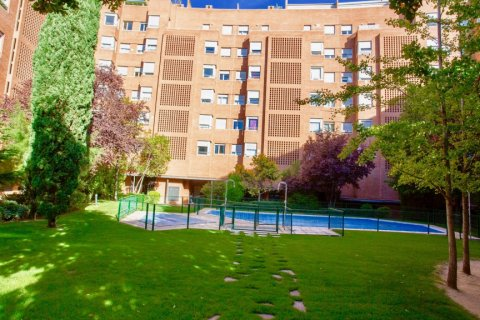 Apartment for rent in Madrid, Spain, 4 bedrooms, 150.00m2, No. 1937 – photo 8