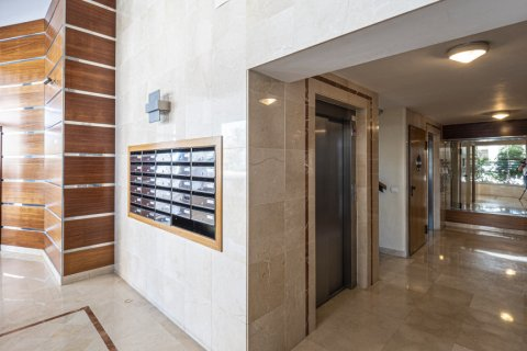 Penthouse for sale in Malaga, Spain, 3 bedrooms, 233.00m2, No. 2194 – photo 25