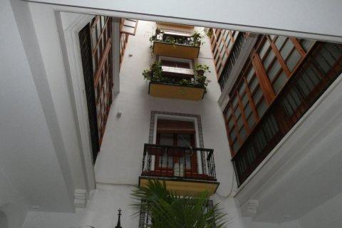 Duplex for sale in Cadiz, Spain, 3 bedrooms, 187.00m2, No. 1611 – photo 4