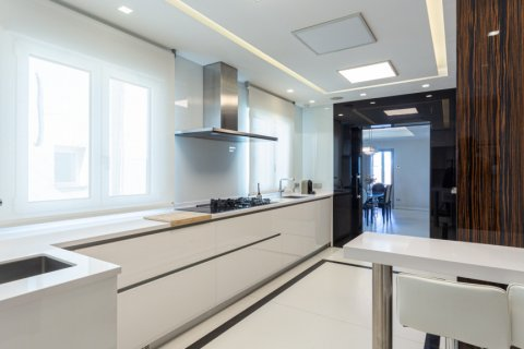 Penthouse for rent in Madrid, Spain, 4 bedrooms, 270.00m2, No. 1492 – photo 10