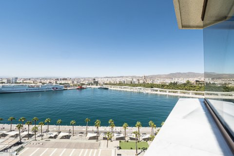 Apartment for sale in Malaga, Spain, 2 bedrooms, 218.00m2, No. 2265 – photo 1