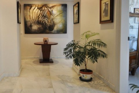 Penthouse for sale in Torremolinos, Malaga, Spain, 3 bedrooms, 331.00m2, No. 2459 – photo 4