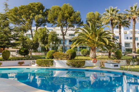 Apartment for rent in Marbella, Malaga, Spain, 2 bedrooms, 117.00m2, No. 2611 – photo 27