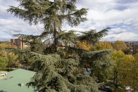 Apartment for sale in Madrid, Spain, 3 bedrooms, 227.00m2, No. 1943 – photo 26
