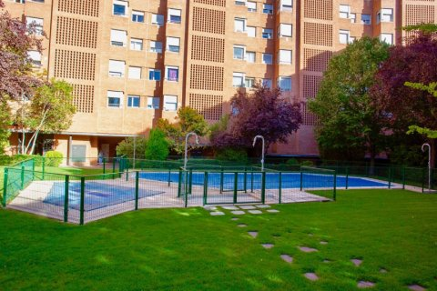 Apartment for rent in Madrid, Spain, 4 bedrooms, 150.00m2, No. 1937 – photo 3