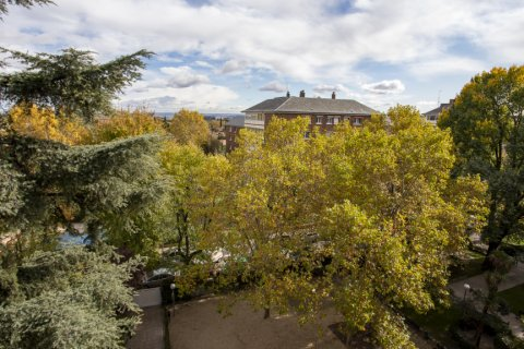 Apartment for sale in Madrid, Spain, 3 bedrooms, 227.00m2, No. 1943 – photo 27