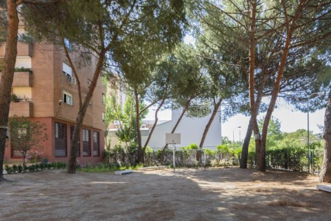 Apartment for sale in Madrid, Spain, 4 bedrooms, 158.00m2, No. 2182 – photo 28