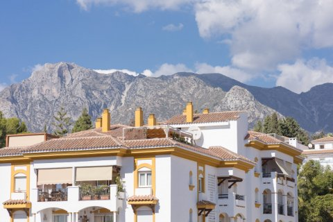 Apartment for rent in Marbella, Malaga, Spain, 3 bedrooms, 86.00m2, No. 1950 – photo 15