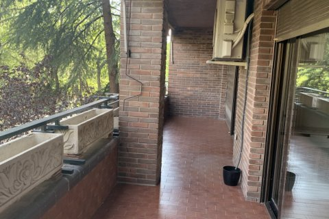 Apartment for rent in Madrid, Spain, 5 bedrooms, 279.00m2, No. 1462 – photo 5