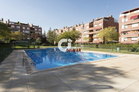 Apartment for rent in Madrid, Spain, 3 bedrooms, 127.00m2, No. 1688 – photo 18