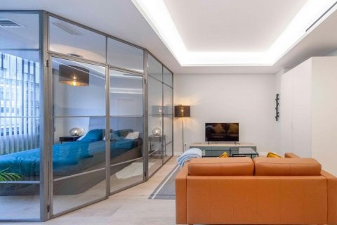 Apartment for rent in Madrid, Spain, 1 bedroom, 55.00m2, No. 2519 – photo 15