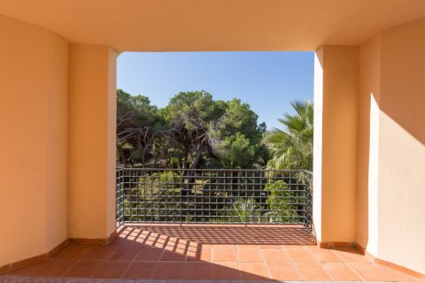 Penthouse for rent in Puerto Banus, Malaga, Spain, 4 bedrooms, 695.00m2, No. 1949 – photo 14