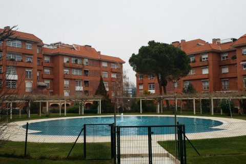 Apartment for rent in Madrid, Spain, 4 bedrooms, 200.00m2, No. 1545 – photo 1