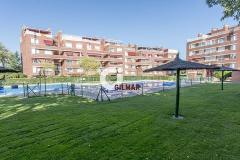 Apartment for rent in Madrid, Spain, 3 bedrooms, 127.00m2, No. 1688 – photo 15