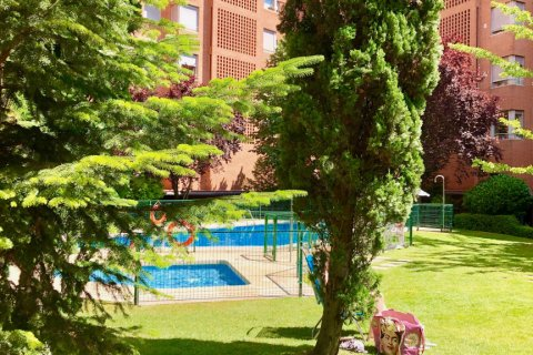 Apartment for rent in Madrid, Spain, 4 bedrooms, 150.00m2, No. 1937 – photo 17