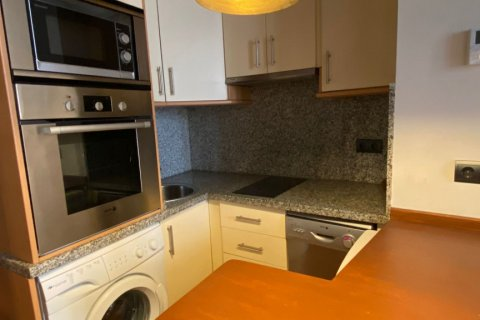 Apartment for rent in Malaga, Spain, 1 bedroom, 56.00m2, No. 2655 – photo 8
